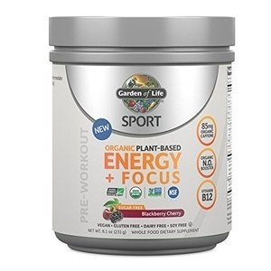 Garden of Life Sport Organic Pre Workout Energy Plus Focus Vegan Energy PowderGarden of Life Sport Organic Pre Workout Energy Plus Focus Vegan Energy Powder