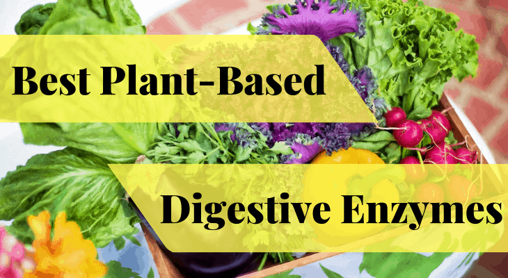 Best Plant-Based Digestive Enzymes