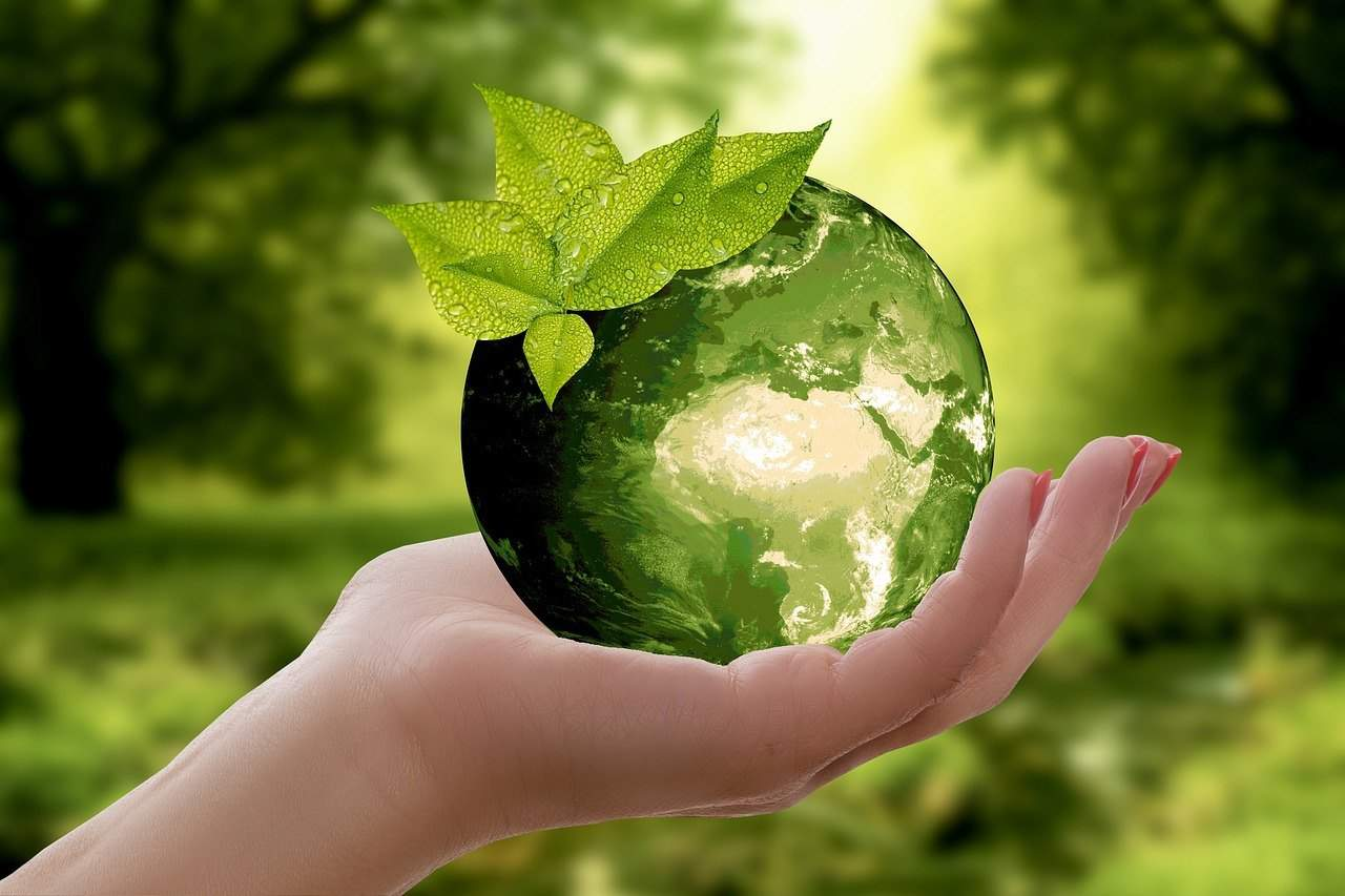 green earth ball image on palm