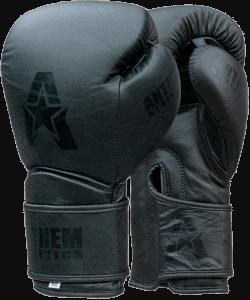 Anthem Athletics STORMBRINGER  Fight Gloves